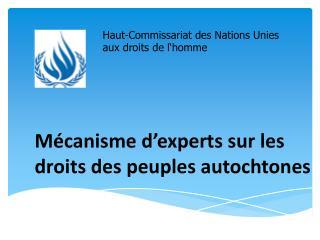 Mécanisme d'experts sur les droits des peuples autochtones