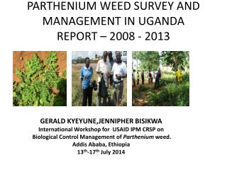 PARTHENIUM WEED SURVEY AND MANAGEMENT IN UGANDA  REPORT � 2008 - 2013