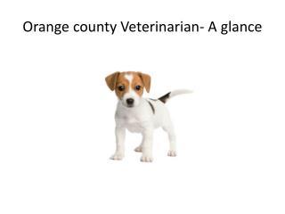 Orange county Veterinarian- A glance