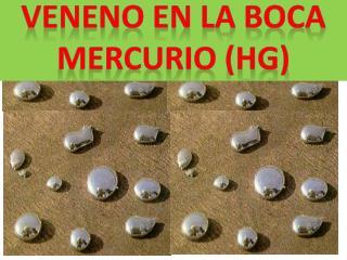 VENENO EN LA BOCA MERCURIO (HG)