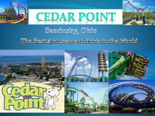 Cedar  P oint