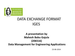 DATA EXCHANGE FORMAT IGES