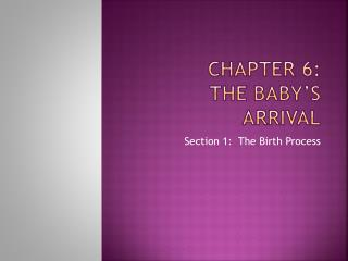 Chapter 6: The Baby�s Arrival