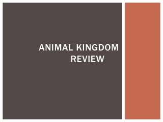 Animal kingdom Review