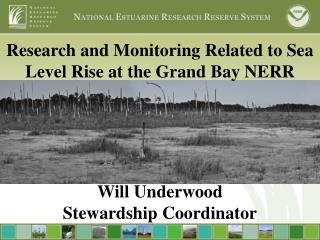 Research and Monitoring Related to Sea Level Rise at the Grand Bay  NERR
