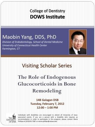 Visiting Scholar Series The Role of Endogenous Glucocorticoids in Bone Remodeling