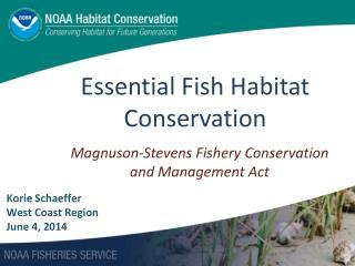 Essential Fish Habitat Conservation