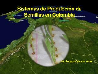Sistemas de Producci�n de  Semillas en Colombia