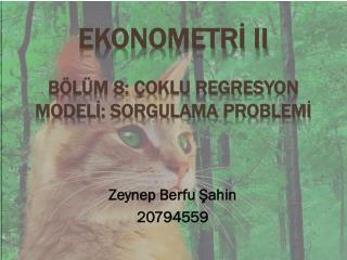 Ekonometrİ  II Bölüm 8: Çoklu Regresyon  Modelİ : Sorgulama  Problemİ