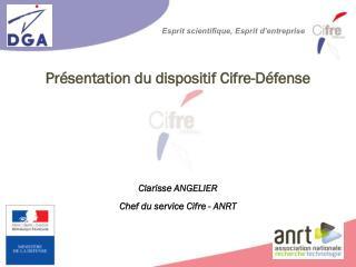 Présentation du dispositif  Cifre-Défense Clarisse ANGELIER Chef du service Cifre - ANRT