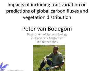 Peter van  Bodegom Department of Systems Ecology VU University Amsterdam The Netherlands