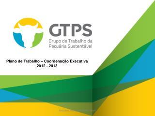 Plano de  Trabalho  –  Coordenação Executiva 2012 - 2013