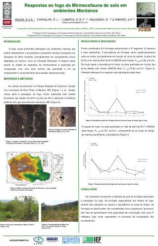 Respostas ao fogo da  Mirmecofauna  de solo em ambientes Montanos