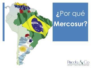 ¿ Por qué  Mercosur?