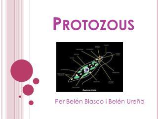 Protozous