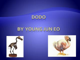 Dodo By  young jun  eo