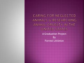 Caring for neglected animals & Researching Animal cruelty in the United States