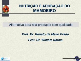 NUTRICAO E ADUBACAO DO MAMOEIRO: alternativa para alta producao ...