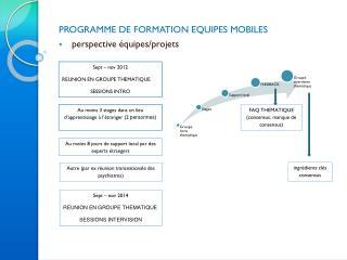 PROGRAMME  DE FORMATION EQUIPES MOBILES perspective  équipes / projets