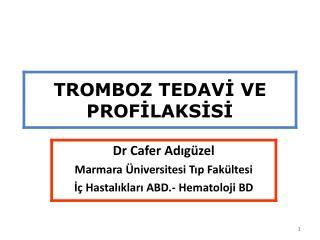 Venöz Tromboemboliler (VTE)