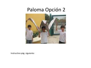 Paloma Opci ón  2