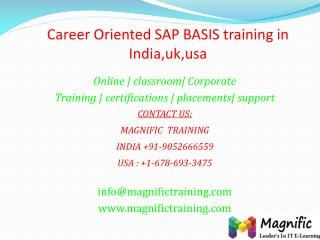 Career Oriented SAP BASIS training in India,uk,usa