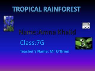 Name:Amna Khalid