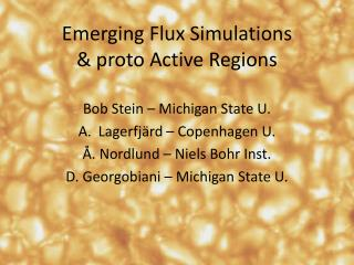 Emerging Flux Simulations &  proto  Active Regions