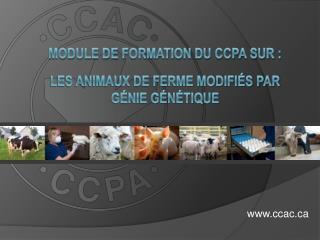 Module de formation du CCPA sur : les animaux de ferme modifiés par  génie génétique