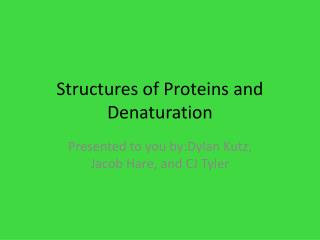 Structures of Proteins and Denaturation