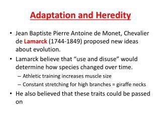Adaptation and Heredity