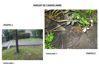 MASSIF DE CANDELABRE