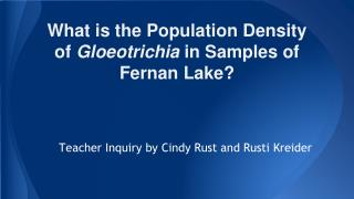 What is the Population Density of  Gloeotrichia  in Samples of Fernan Lake?
