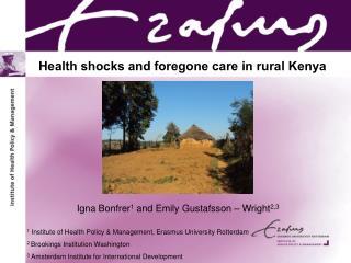 Health shocks  and foregone  care in  rural  Kenya