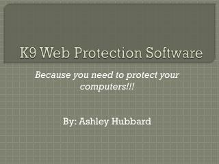 K9 Web Protection Software