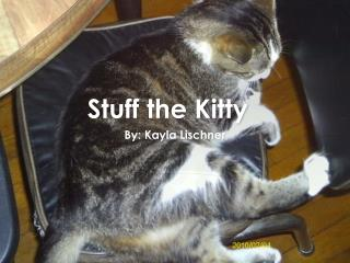 Stuff the Kitty