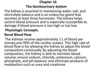 Chapter  16   The  Genitourinary System