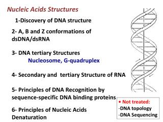 Nucleic Acids Structures