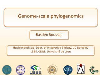 Genome-scale  phylogenomics