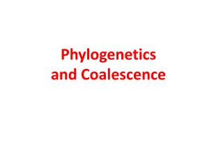 Phylogenetics and Coalescence