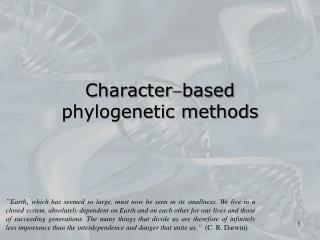 Characterbased  phylogenetic methods