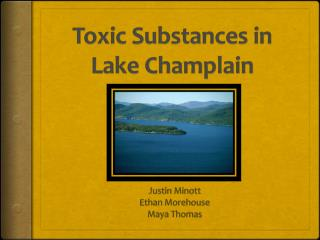 Toxic Substances in Lake Champlain