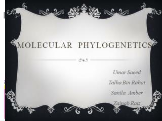 What is Molecular  Phylogenetics