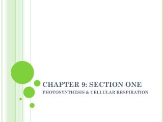 CHAPTER 9: SECTION ONE