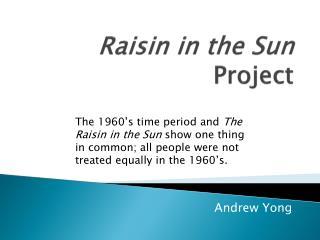 Raisin in the Sun  Project
