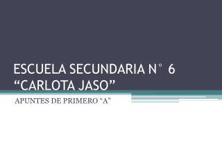 "ESCUELA SECUNDARIA N° 6 ""CARLOTA JASO"""