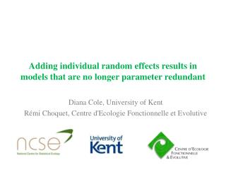 Adding individual random effects results in models that are no longer parameter redundant