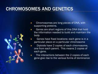 Chromosomes and Genetics
