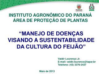 """""""MANEJO DE DOENÇAS VISANDO A SUSTENTABILIDADE DA CULTURA DO FEIJÃO"""""""