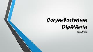 Corynebacterium Diphtheria